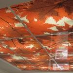 Ремонт. Натяжной и подвесной потолок