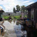 Как защитить придомовую территорию от затопления?
